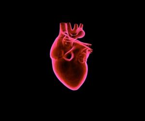 kardiologe_hamburg