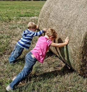 Kindergeburtstag Bauernhof_2